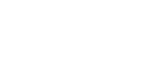 Picture of Nonviolenze logo